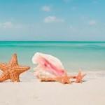 mare profumo di mare dal 21 al 27 luglio by AstroMix